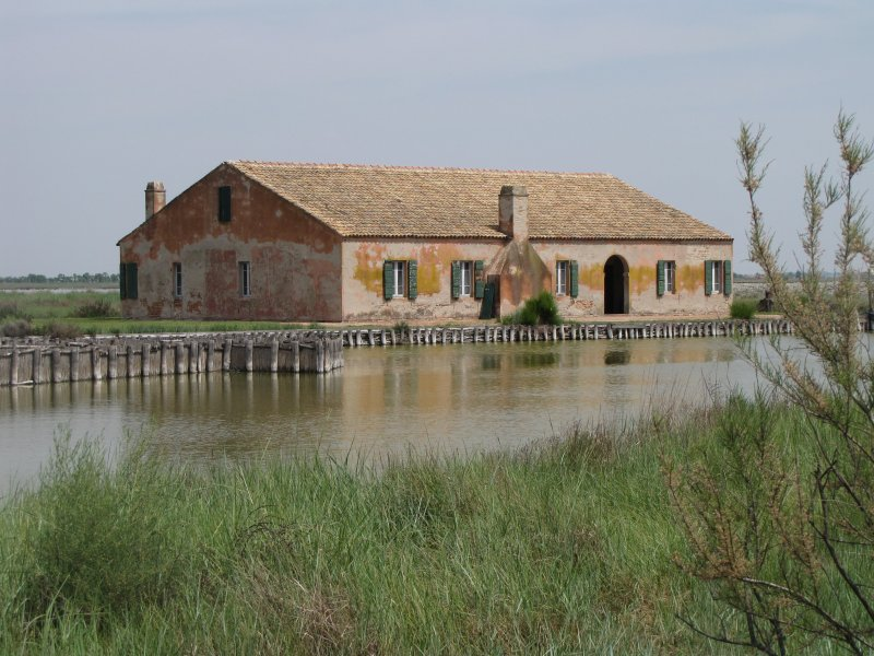 "The ""Casoni"" of Comacchio's lagoons"