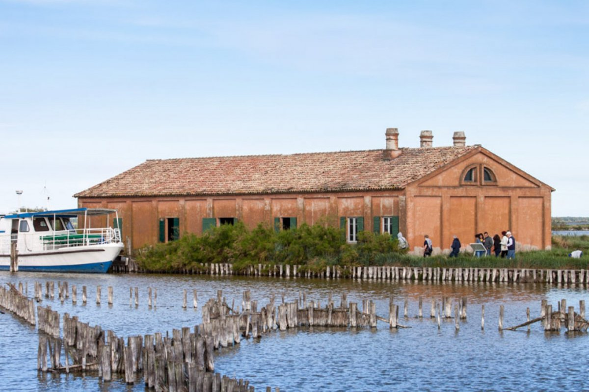 The Comacchio's lagoons by boat