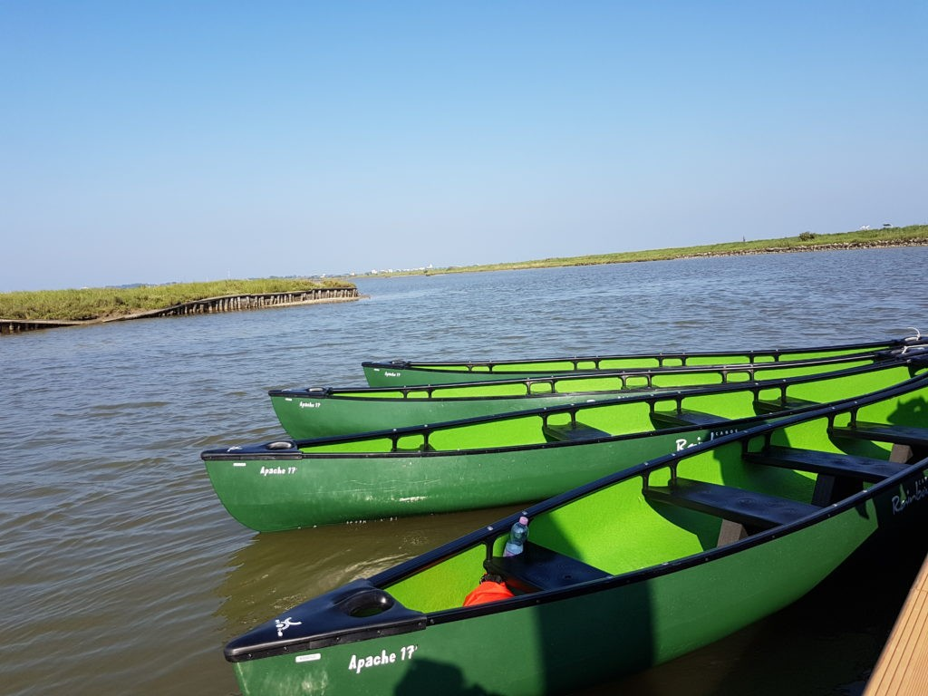 The Comacchio's lagoons by canoe